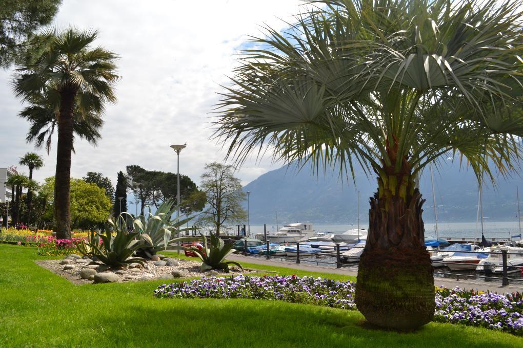 Holiday apartment Appartement - Arabella (881297), Locarno, Lake Maggiore (CH), Ticino, Switzerland, picture 18