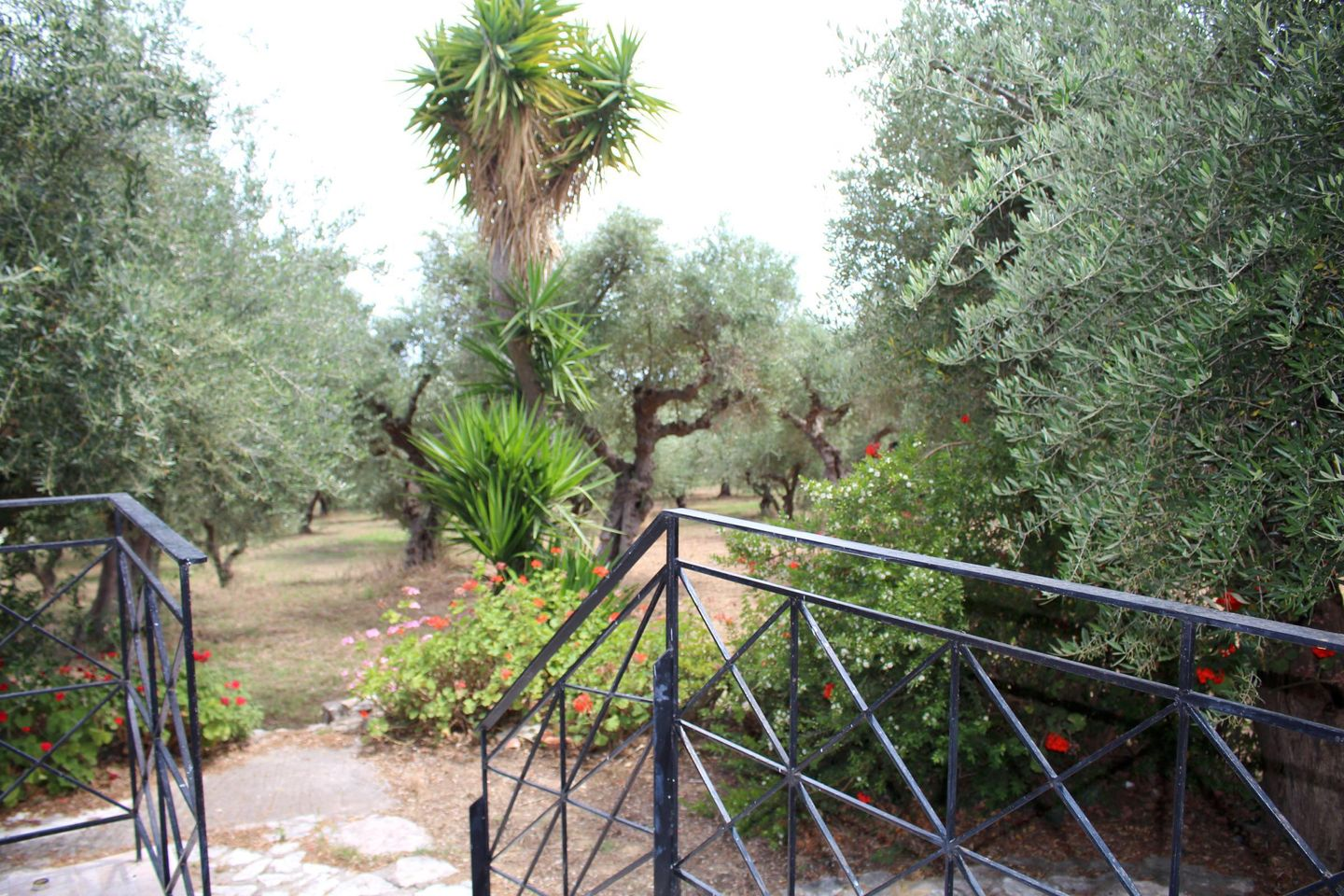 Holiday apartment SPOURGITIS (168162), Peroulia, , Peloponnese, Greece, picture 14