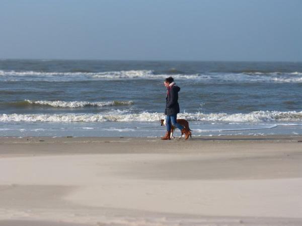 Urlaub auf der Nordseeinsel mit dem Hund