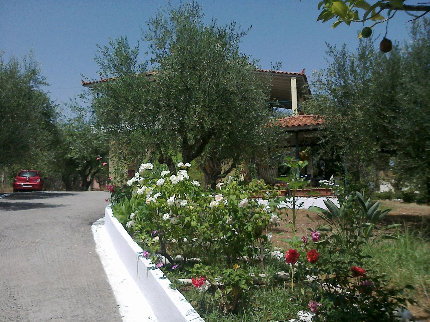 Holiday apartment DIMITRIS (188888), Chrani, , Peloponnese, Greece, picture 18