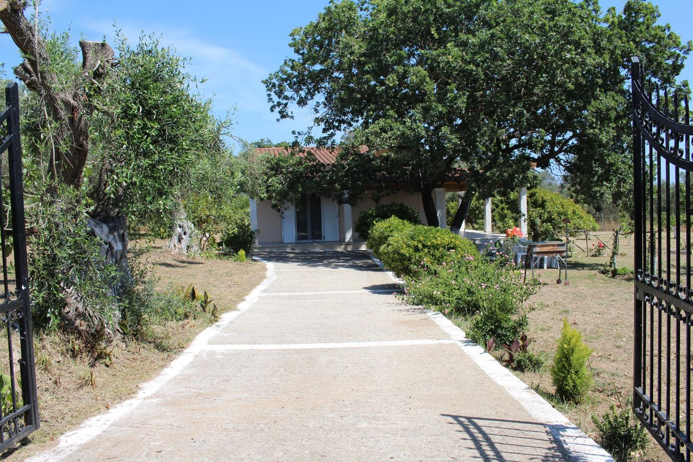 Holiday house CHRISSA (167888), Moraitika, Corfu, Ionian Islands, Greece, picture 30