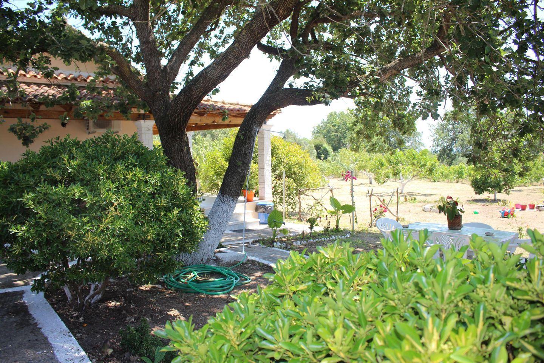 Holiday house CHRISSA (167888), Moraitika, Corfu, Ionian Islands, Greece, picture 28