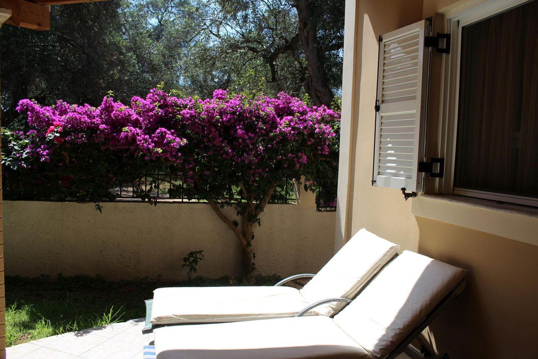 Holiday house JASMIN (167878), Skidi, Corfu, Ionian Islands, Greece, picture 4