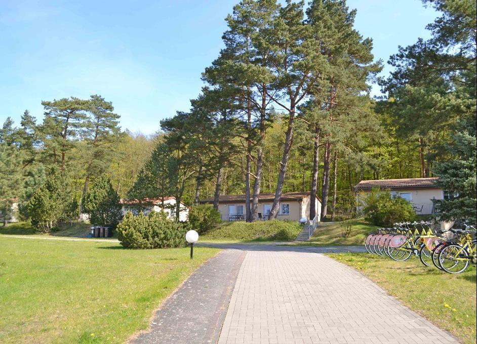 Ferienwohnung Waldsiedlung - Waldhaus App 4.1 (882635), Korswandt, Usedom, Mecklenburg-Vorpommern, Deutschland, Bild 12