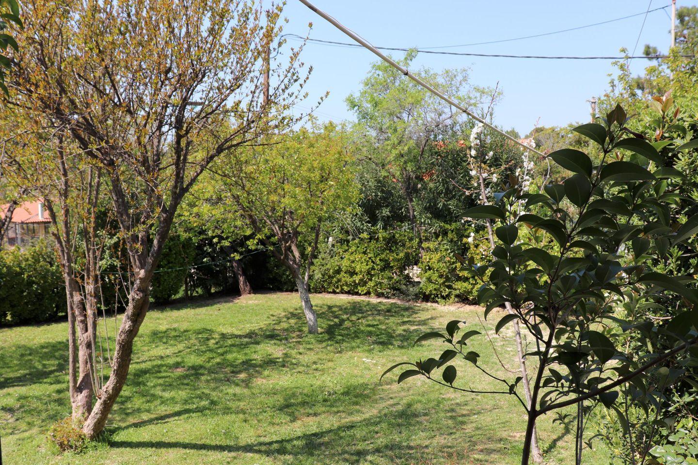 Holiday house CHALKOUTSI (967340), Skala Oropou, , Attica, Greece, picture 31