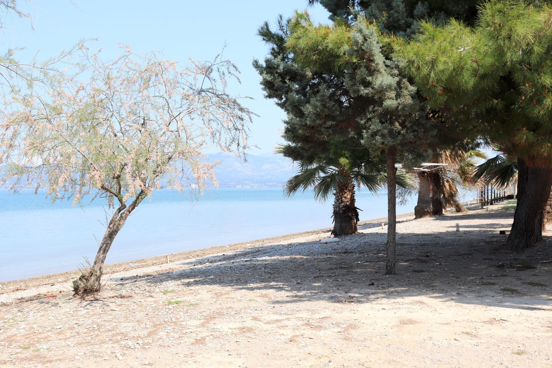 Holiday house CHALKOUTSI (967340), Skala Oropou, , Attica, Greece, picture 42