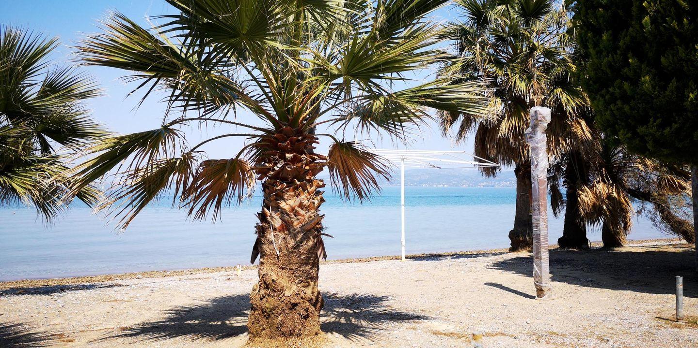 Holiday house CHALKOUTSI (967340), Skala Oropou, , Attica, Greece, picture 39