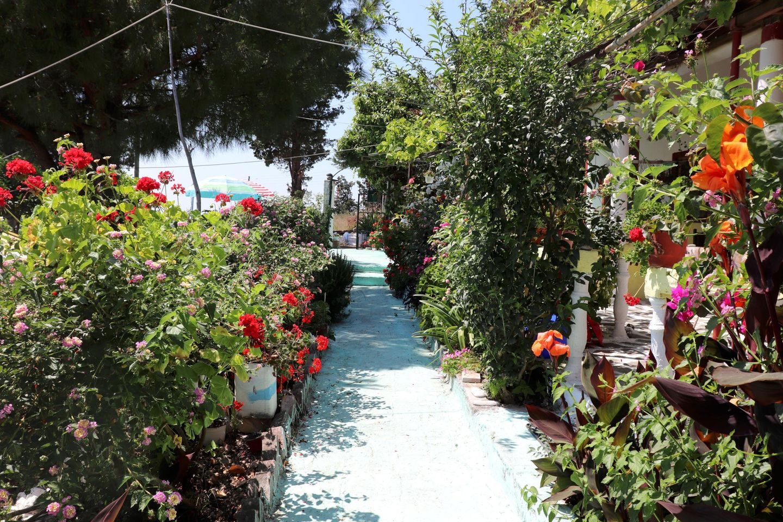 Holiday house ABELAKI 3 (396263), Paramonas, Corfu, Ionian Islands, Greece, picture 29