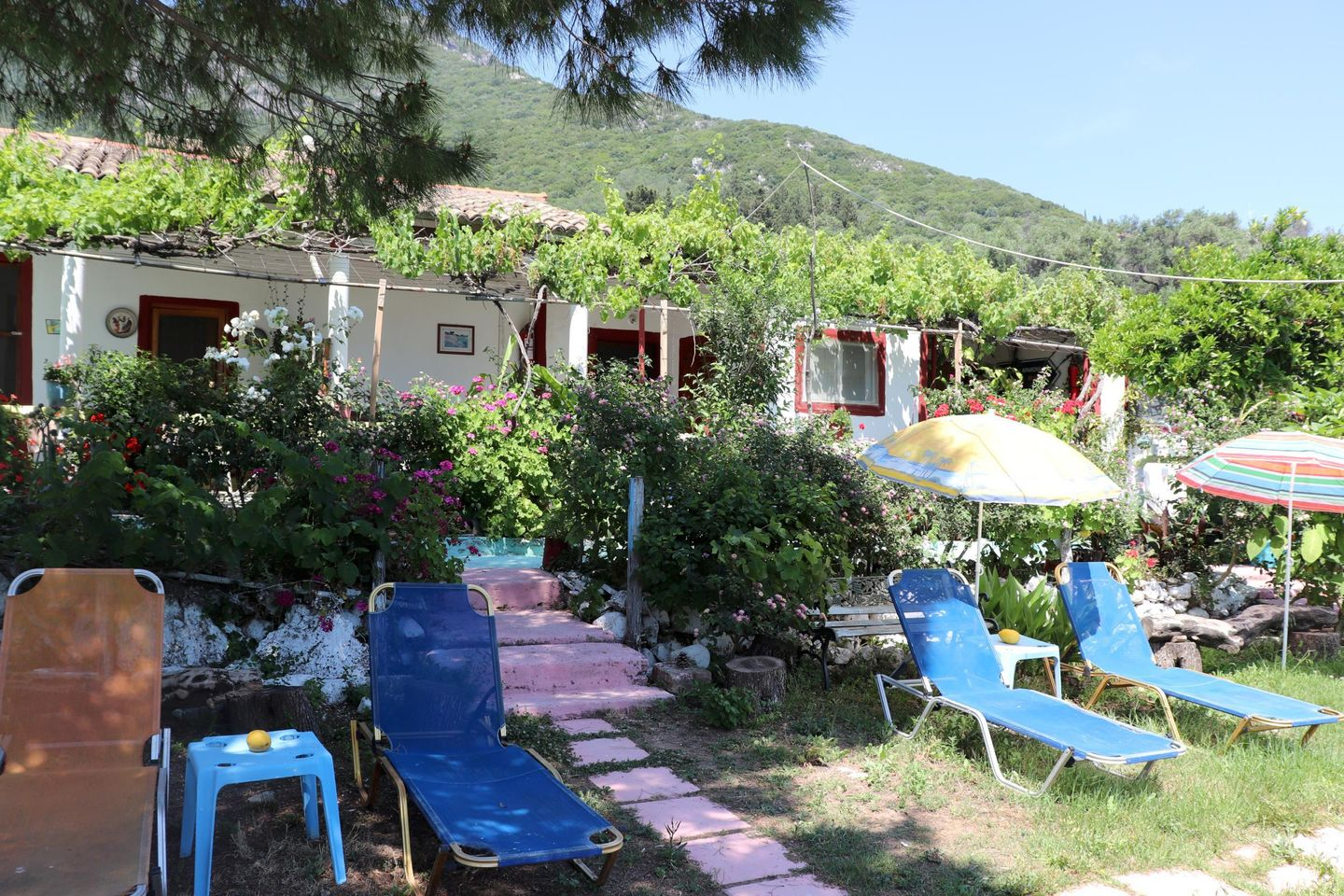 Holiday house ABELAKI 1 (167854), Paramonas, Corfu, Ionian Islands, Greece, picture 6