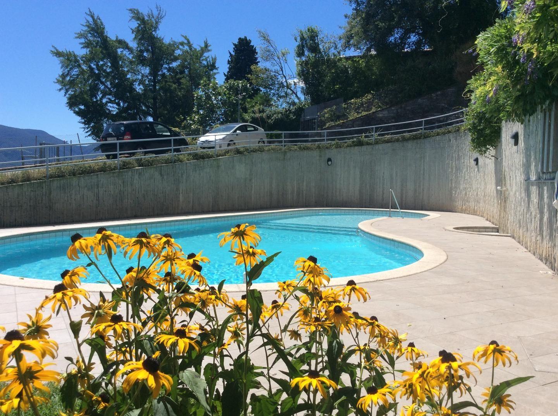 Holiday apartment Adriana (881289), Locarno, Lake Maggiore (CH), Ticino, Switzerland, picture 13