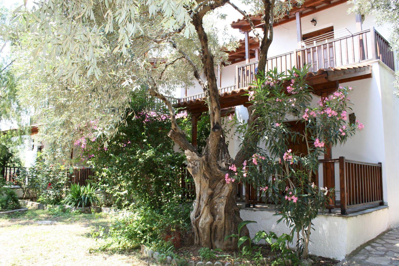Holiday apartment KATJA (319652), Kalamos, , Thessaly, Greece, picture 2