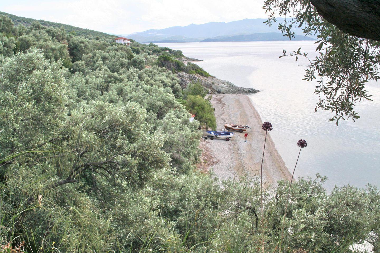 Ferienwohnung KATJA (364451), Kalamos, , Thessalien, Griechenland, Bild 12