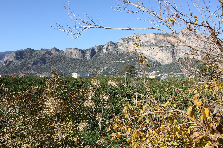 Ferienhaus LAKKOS (595508), Leonidhion, , Peloponnes, Griechenland, Bild 25