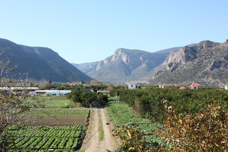 Ferienhaus LAKKOS (595508), Leonidhion, , Peloponnes, Griechenland, Bild 26