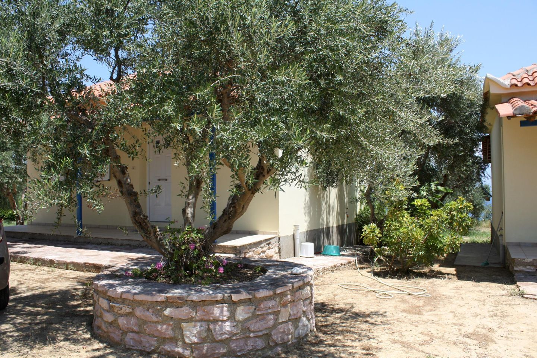 Ferienhaus AGGELIKI 4 (168150), Peroulia, , Peloponnes, Griechenland, Bild 7