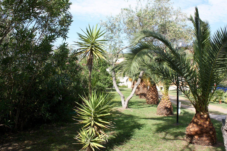 Holiday apartment IRINI-STUDIO 1 (265575), Aghios Petros, Corfu, Ionian Islands, Greece, picture 14