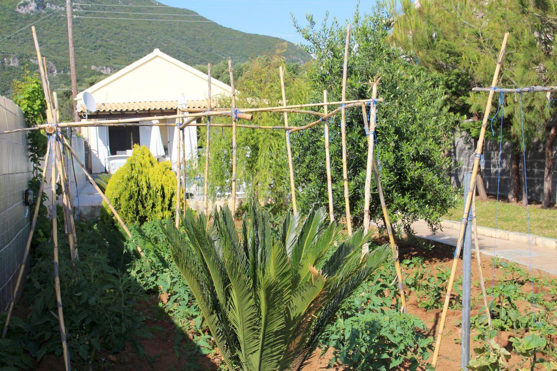Maison de vacances ANGELA (359912), Moraitika, Corfou, Iles Ioniennes, Grèce, image 23