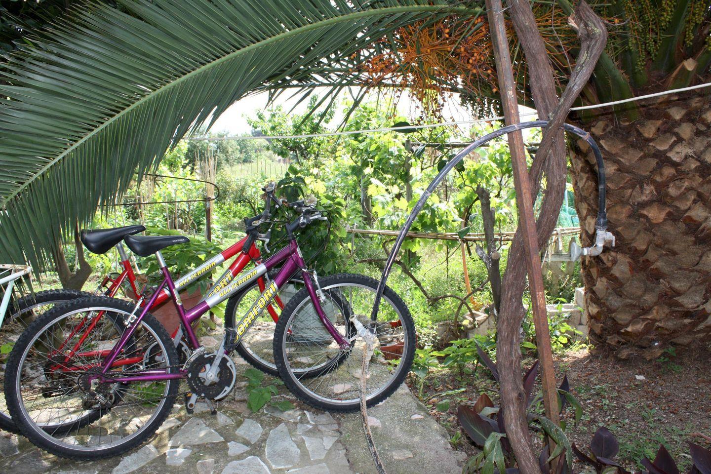 Holiday house ABELAKI 3 (396263), Paramonas, Corfu, Ionian Islands, Greece, picture 28