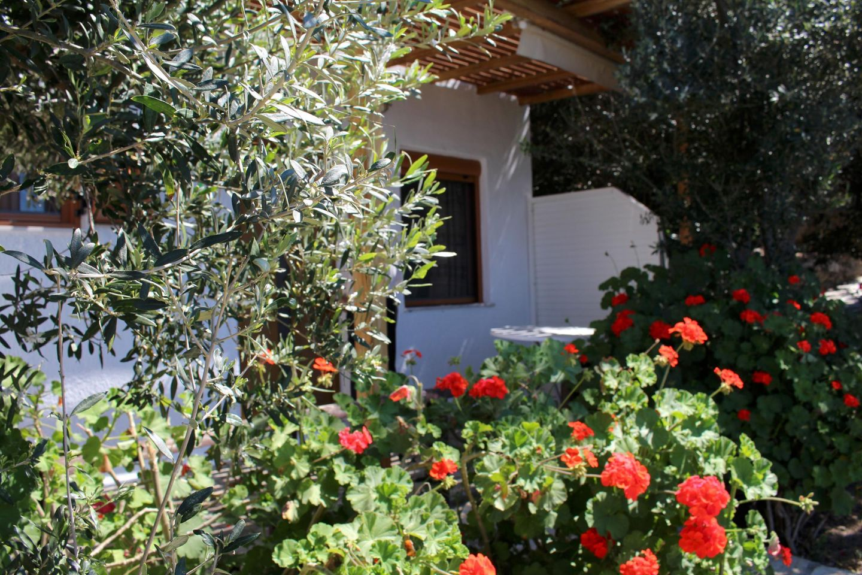 Holiday apartment KOUNENOS Studio 2 (216002), Istron, Crete North Coast, Crete, Greece, picture 8