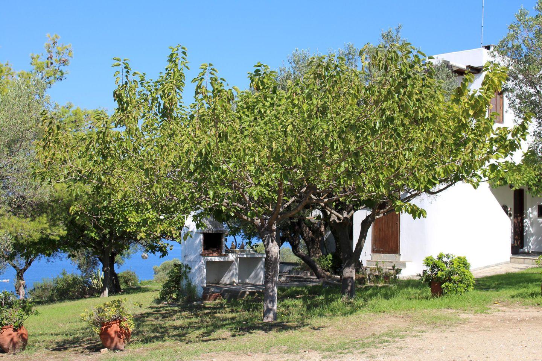 Ferienwohnung ASPRO SPITI 2 (277256), Vurvuru, Chalkidiki, Makedonien, Griechenland, Bild 25