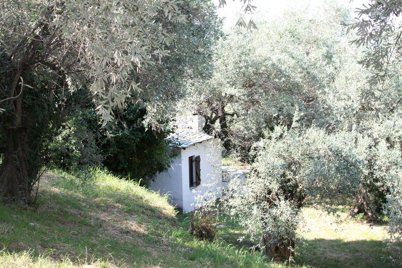 Ferienhaus AIOLOS (439194), Zagora, Magnisia, Thessalien, Griechenland, Bild 9