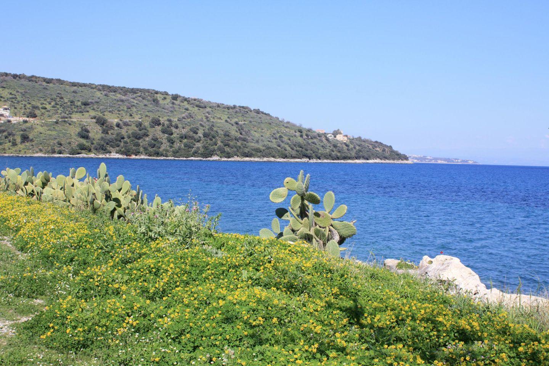 Maison de vacances MESONISSIA (405877), Kamares, , Péloponnèse, Grèce, image 30