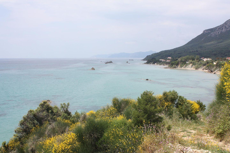 Maison de vacances ERATO-EXCLUSIVE (381049), Moraitika, Corfou, Iles Ioniennes, Grèce, image 28