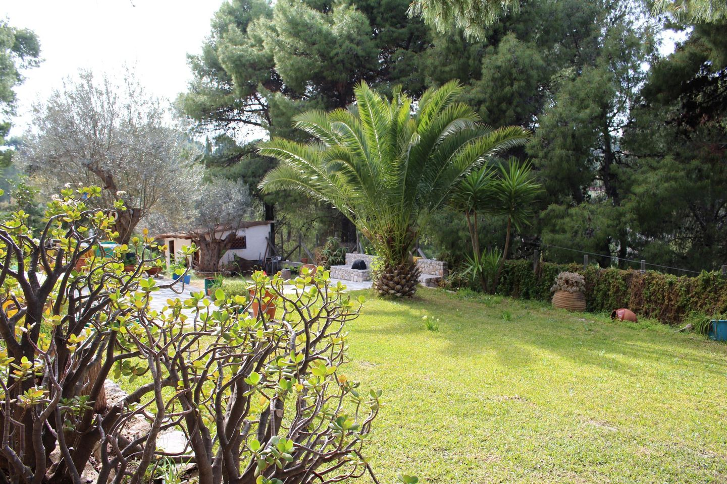 Holiday house TSUDEROS (168025), Korinthos, , Peloponnese, Greece, picture 30