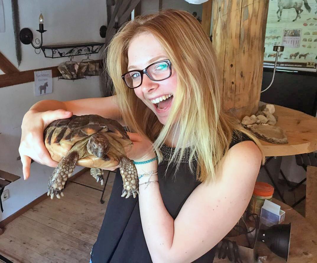Schildkröten auf Sonis kleiner Farm