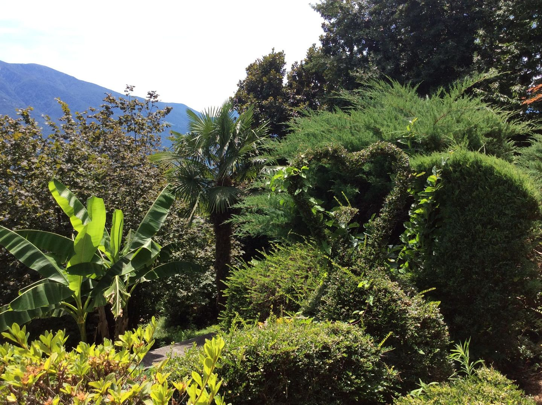 Holiday house Bellaterra A (881272), Orselina, Lake Maggiore (CH), Ticino, Switzerland, picture 29