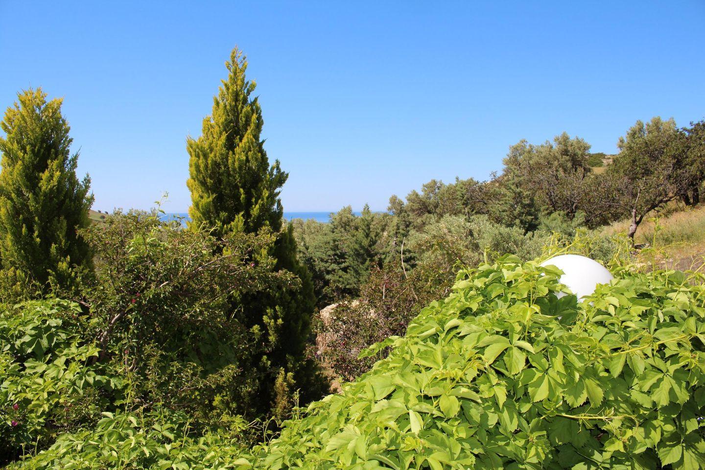 Maison de vacances BLUE STONE (263008), Triopetra, Crète Côte du Sud, Crète, Grèce, image 34