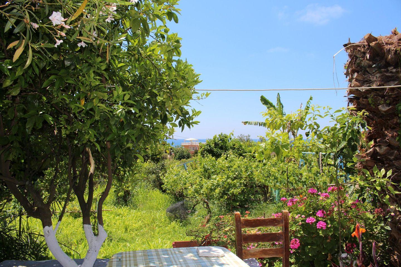 Holiday house ABELAKI 3 (396263), Paramonas, Corfu, Ionian Islands, Greece, picture 27