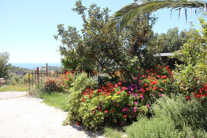 Holiday house ERINI (375987), Triopetra, Crete South Coast, Crete, Greece, picture 24