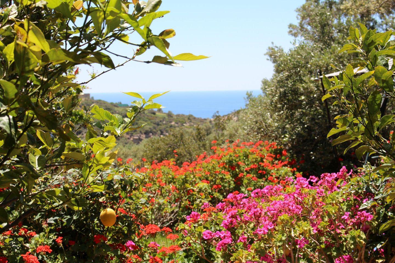 Holiday house ERINI (375987), Triopetra, Crete South Coast, Crete, Greece, picture 25