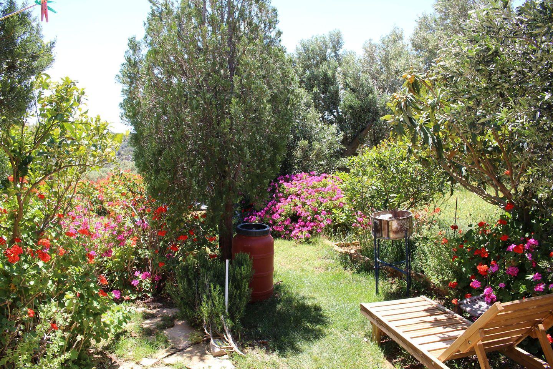 Holiday house ERINI (375987), Triopetra, Crete South Coast, Crete, Greece, picture 20