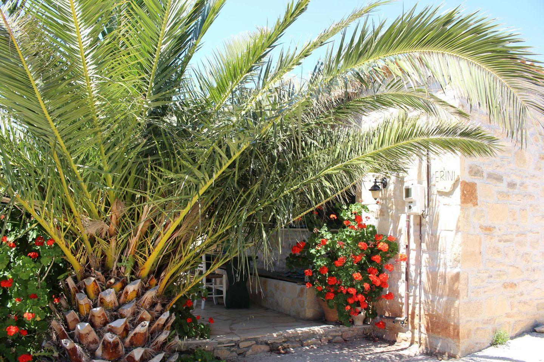 Holiday house ERINI (375987), Triopetra, Crete South Coast, Crete, Greece, picture 19