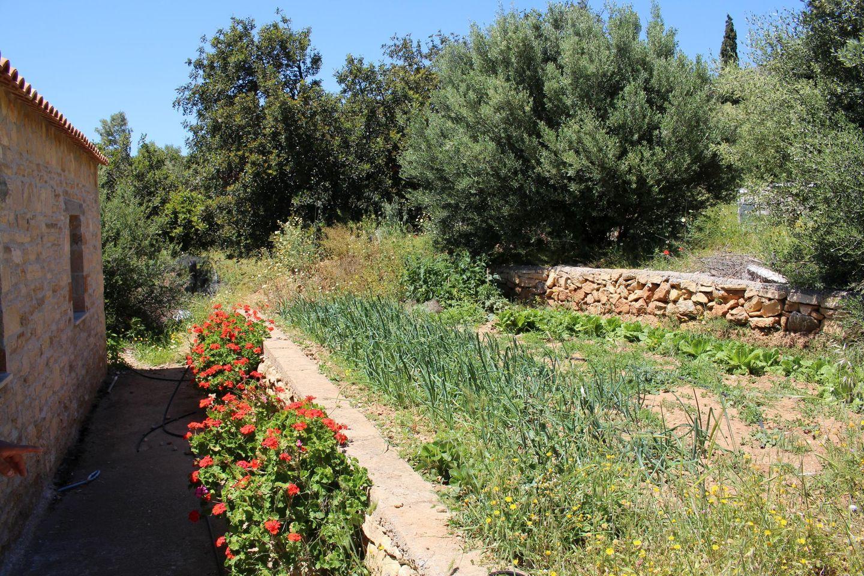 Holiday house ERINI (375987), Triopetra, Crete South Coast, Crete, Greece, picture 23