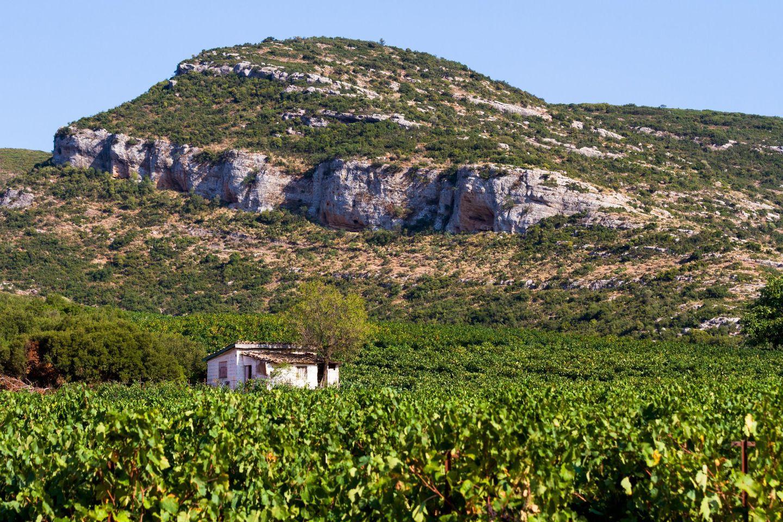 Weingebiet Nemea, Argolis, Peloponnes