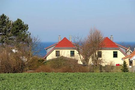Doppelhäuser zum Reetmoor Haus Theresa Schwarzer Busch - Landschaft
