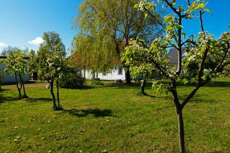 Reihenhäuser Timmendorf Haus Ostseekrabbe Timmendorf - Nachbarschaft