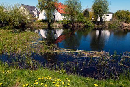 Reihenhäuser Timmendorf Haus Ostseekrabbe Timmendorf - Landschaft