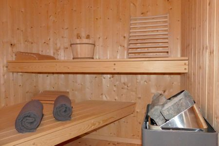 Dänische Ferienhäuser am Salzhaff Haus Pacific Vorwerk - Sauna