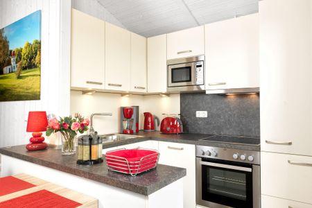 Dänische Ferienhäuser am Salzhaff Haus Vogelparadies Vorwerk - Küche / Küchenzeile