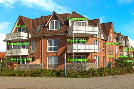 Haus Südwester Austernperle Timmendorf Strand -