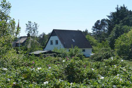 Haus Sandhügel 5 Ferienwohnung *Sandhügel 5 -EG*
