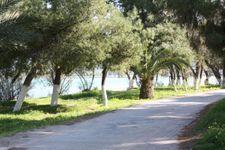 Weg zum Strand von Chalkoutsi nach ca. 1km