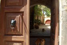 Fassade / Eingang