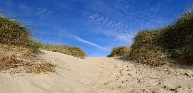 Sylt Frühling Strand Dünen Angebot Ferienwohnung