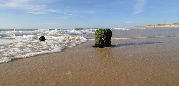Bild Sylt Meer Strand Sand