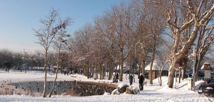 Bild Sylt Schnee Dorfteich Wenningstedt